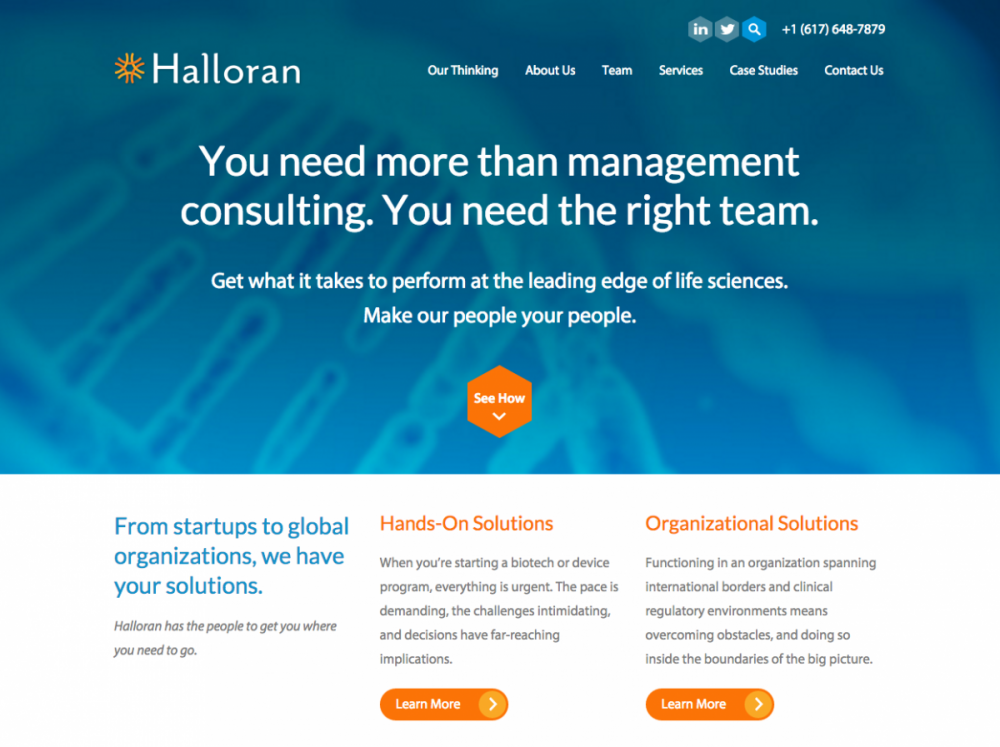 Halloran Consulting Group After