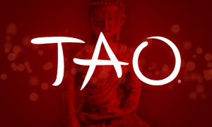 TAO Restaurant website by TVI Designs